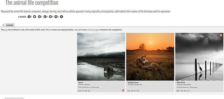 konkurs fotograficzny art limited